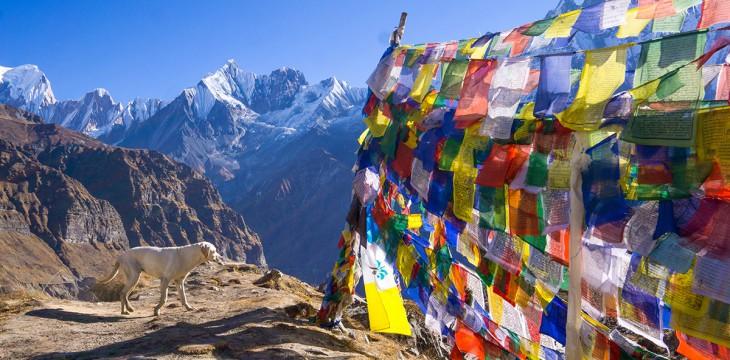 Dekoration und Glücksbringer: Tibetische Gebetsfahnen